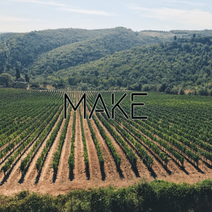 An instagram picture of 25 rows of beautiful wine grapes grown in the Tuscan country side. This is a part of a collage of images that together say Your Online Presence Can Make Or Break Your Business by Felice Marketing.